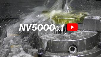 NV5000α1